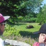 vylet-8tr-zoo-praha-04